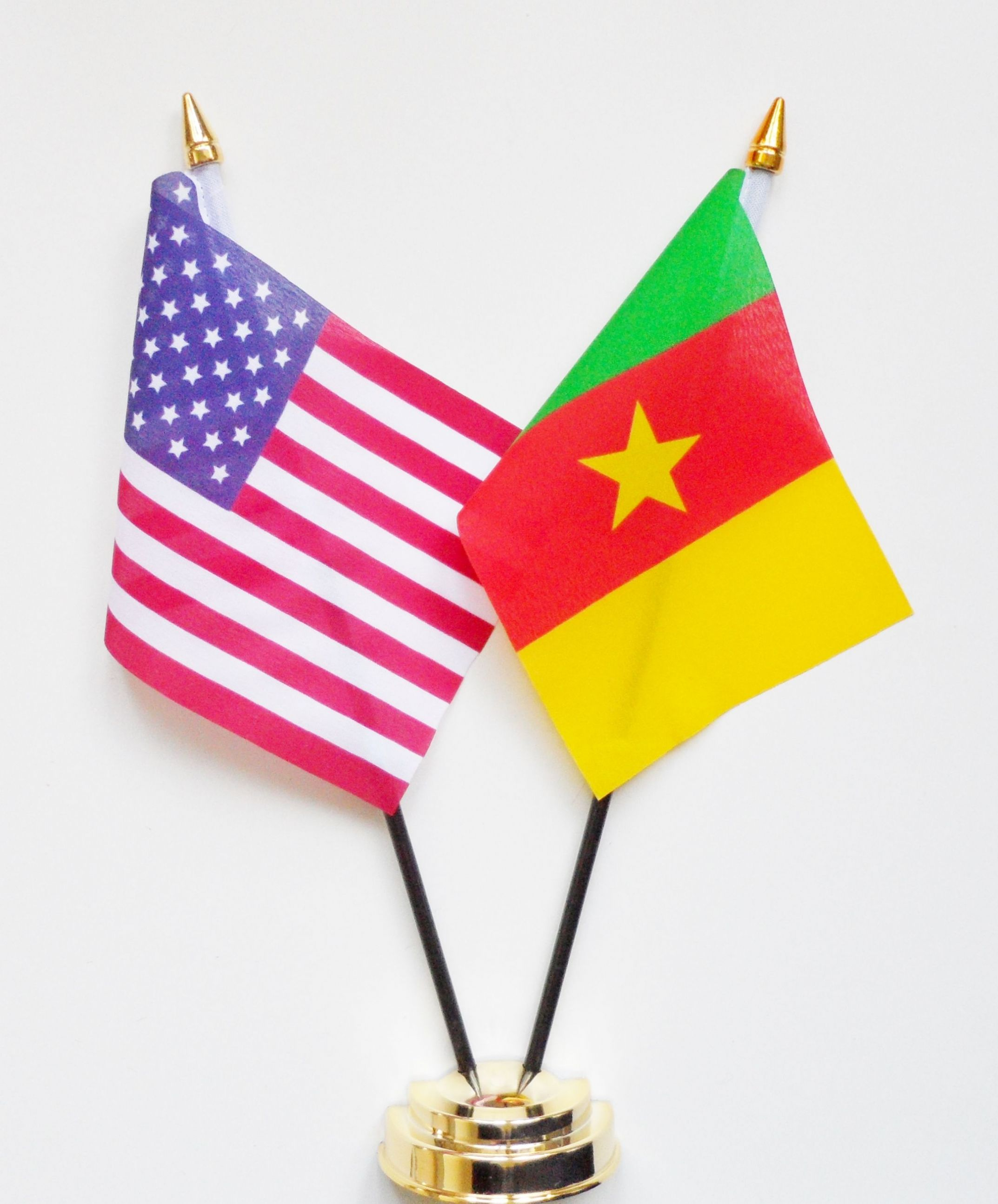 cameroon flag picture